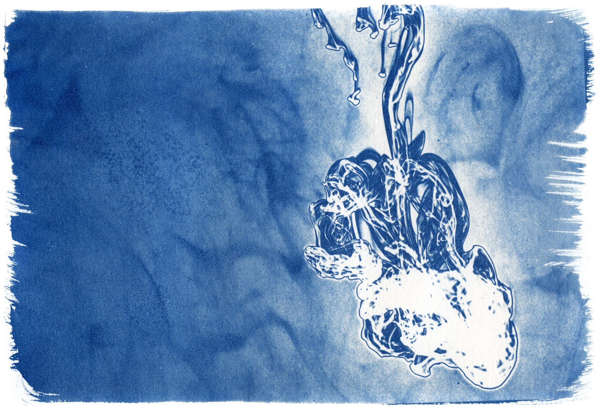 Legacy: Cyanotype by Alex Kay